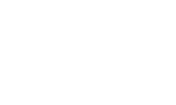 ford-white